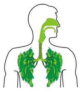 Problèmes de l'appareil respiratoire