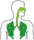 علاج مشاكل الجهاز التنفسي