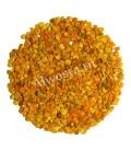Grains de pollen