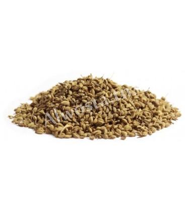 Ammi Visnaga seeds (Khella)