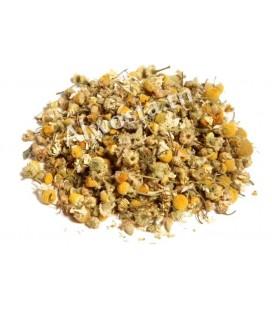 Chamomile (Camomile, Matricaria chamomilla)