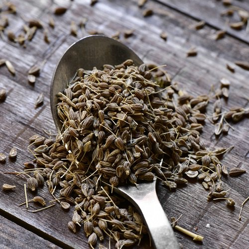 Medicinal benefits of anise
