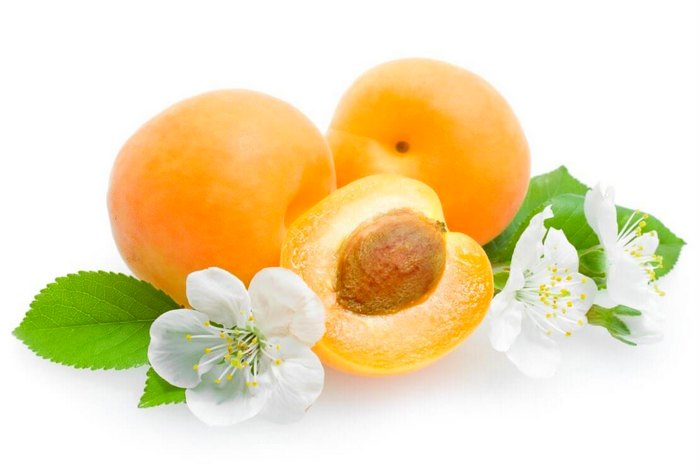 Properties of apricot