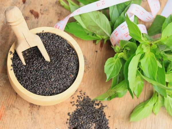 Medecinal properties of basil seeds