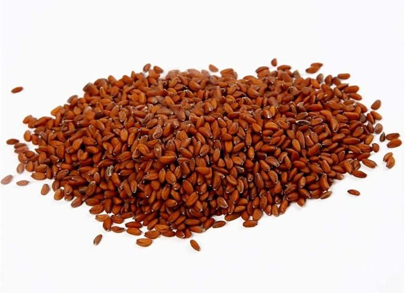 Garden Cress Seeds Benefits Uses And Side Effects Alwosta Blog