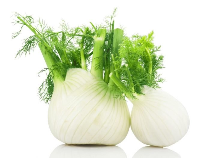 Contraindications of fennel