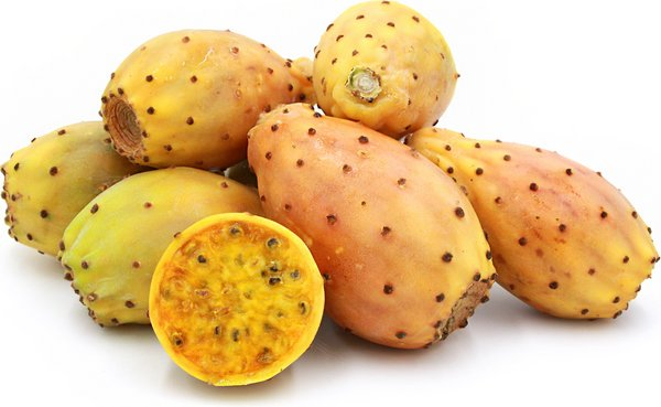 what is prickly pear?