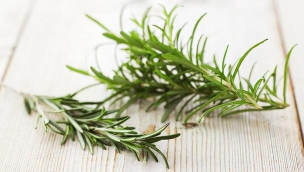 rosemary properties and virtues