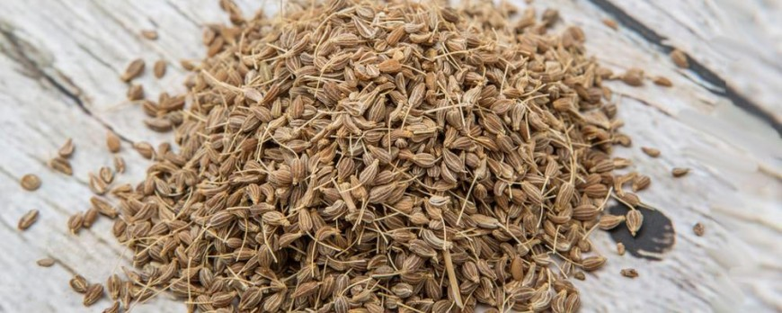 Anise seed: Properties, benefits, mischief, dosage, and side effects