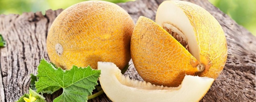 Benefits of Melon (Cantaloupe), Uses and side effects
