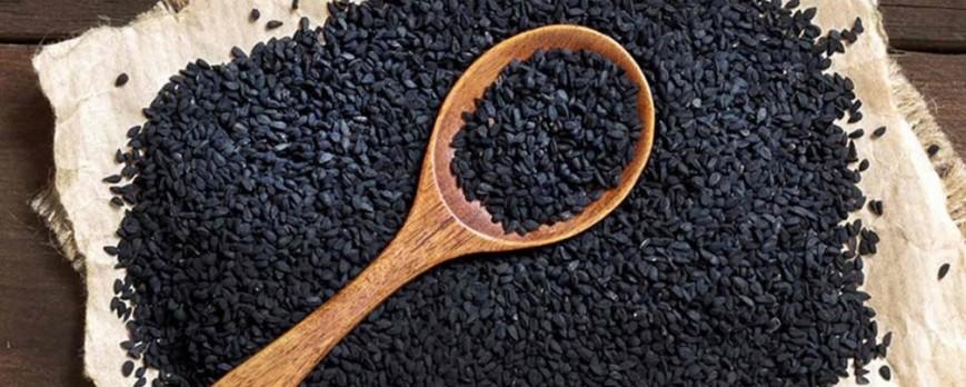 Graines d'Oignon, dossier complet: Bienfaits, propriétés et effets secondaires