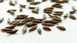 Graines de Laitue, dossier complet: Bienfaits, propriétés et effets secondaires