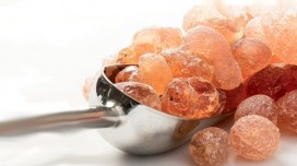 Gum Arabic and kidney failure