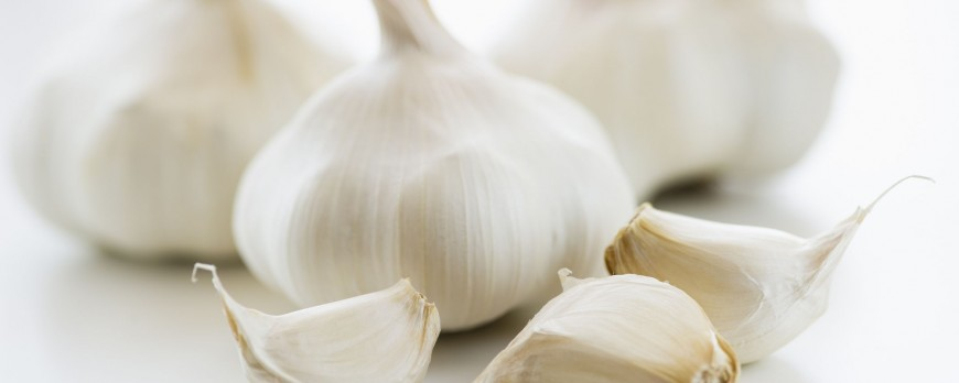 Garlic benefits, dosage and side effects
