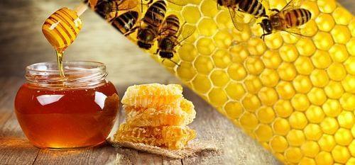 العسل ومنتجات النحل